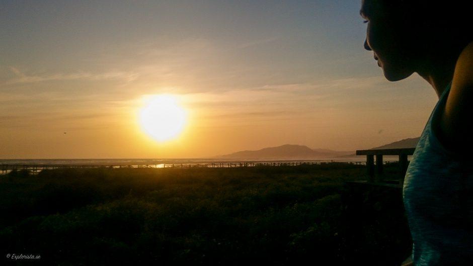 löpare solnedgång