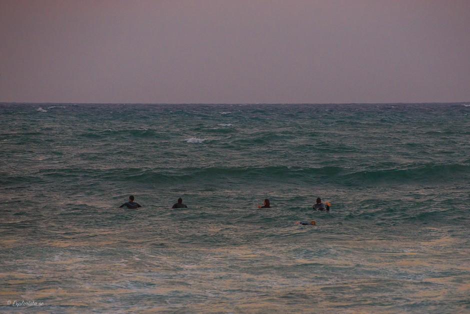 surfare i havet