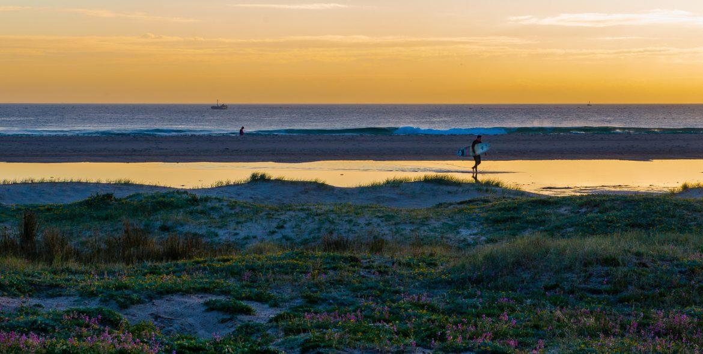 surfare i tarifa i solnedgång