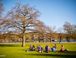 yoga i slottskogen göteborg
