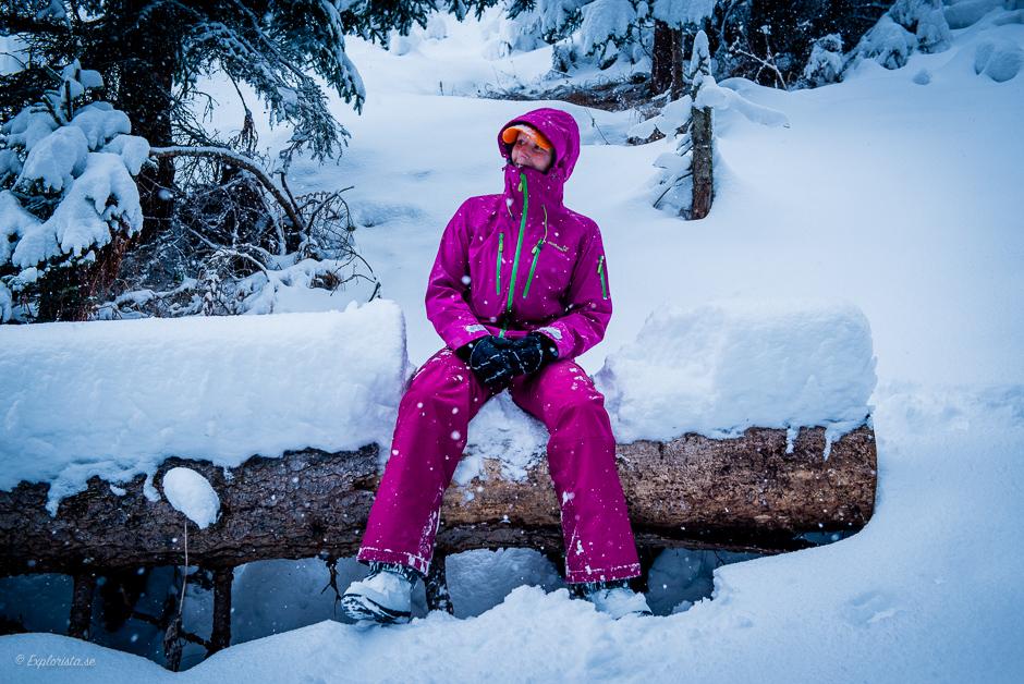 explorista winter