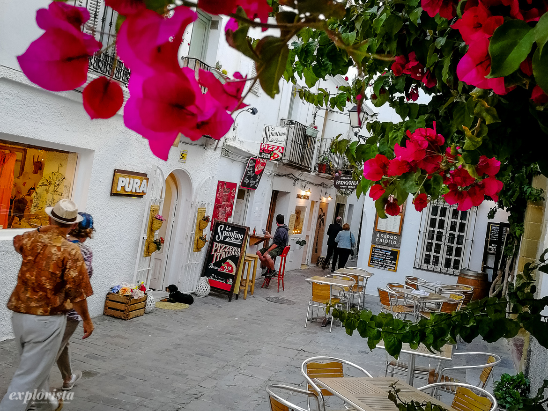 plaza i tarifa med bougainvillea