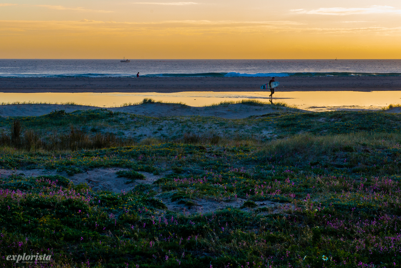 tarifa sunset with surfer