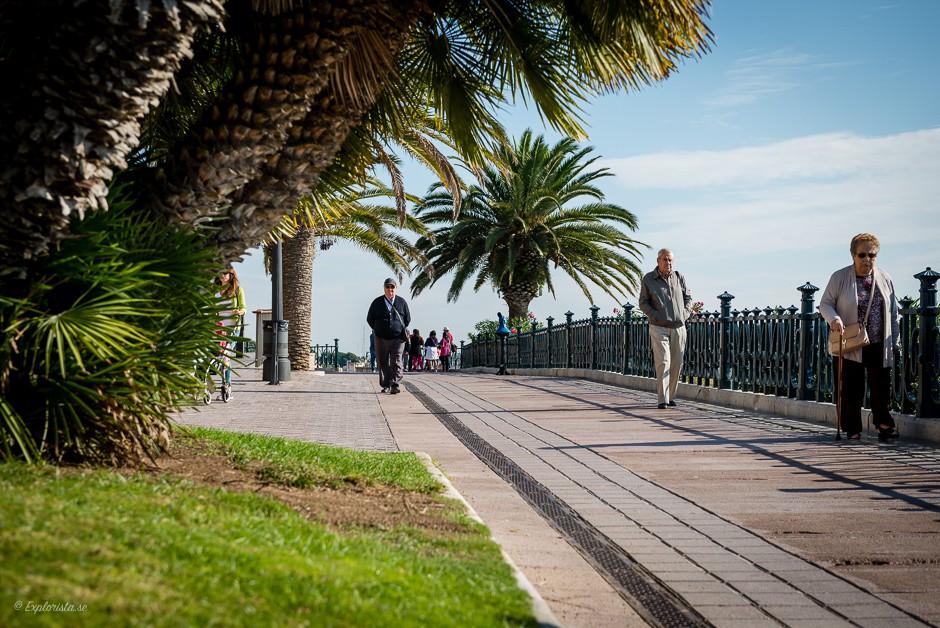 gångväg palmer