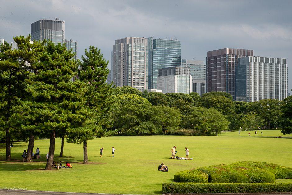 imperial palace garden tokyo