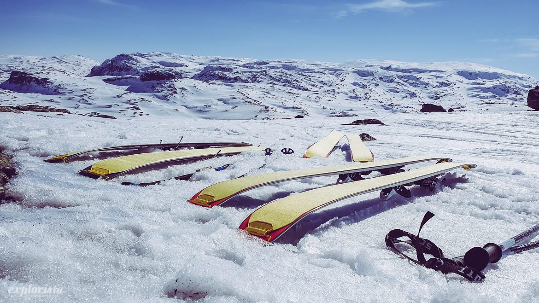 Skidor med stighudar