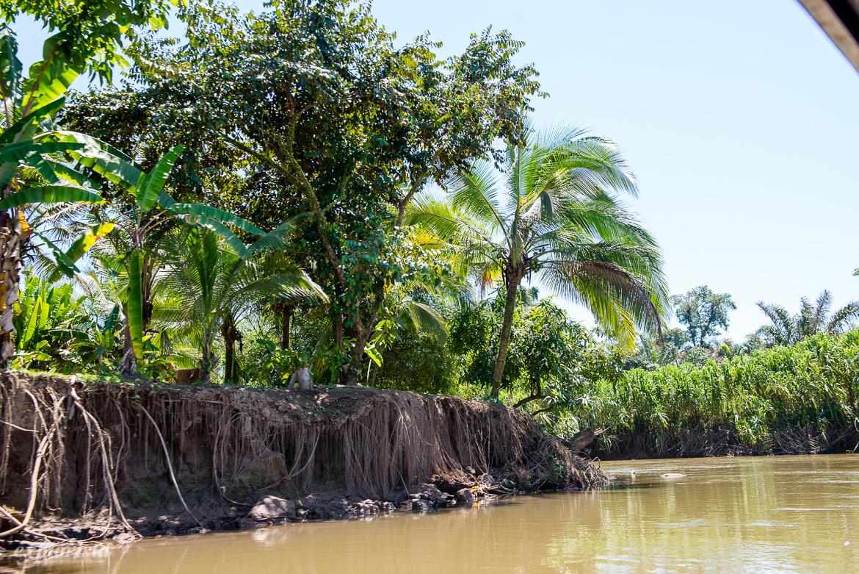 flodbank