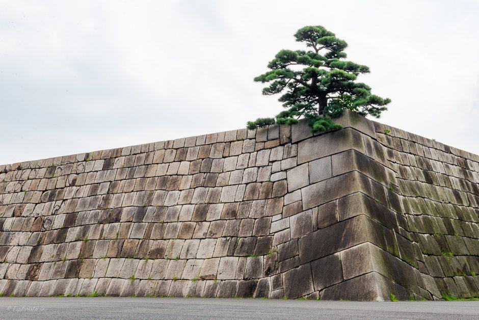 imperial garden tokyo