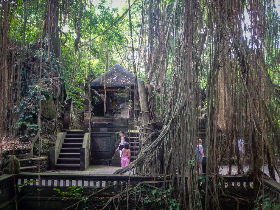 djungeltempel