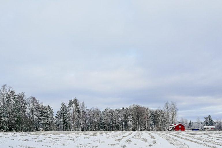 snöigt fält axamo