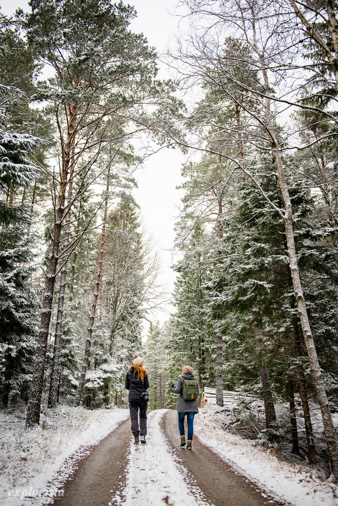 hildas.se & bucketlife.se på skogspromenad