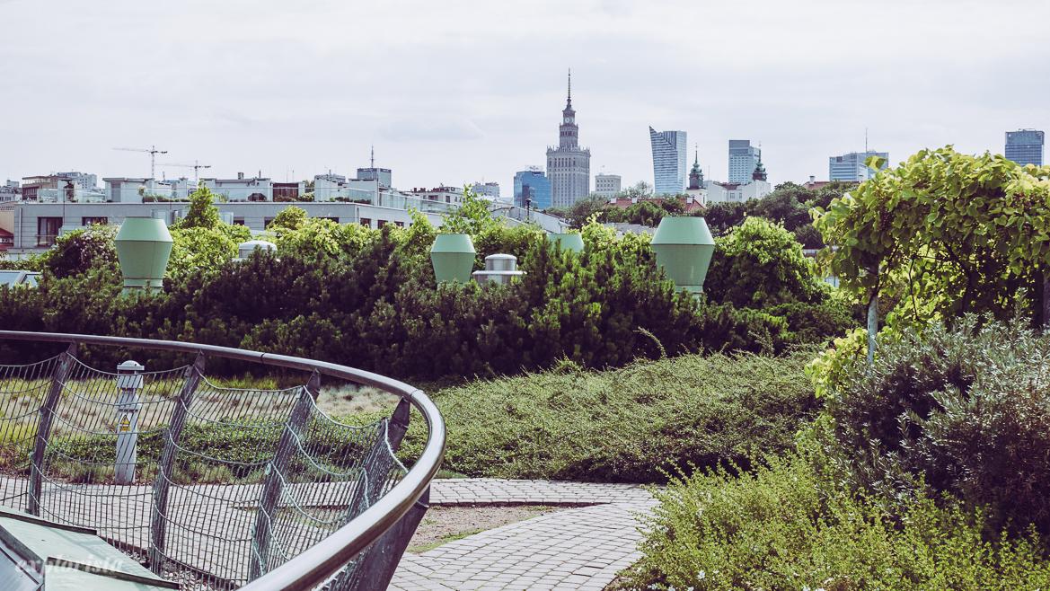 rooftop garden warszawa