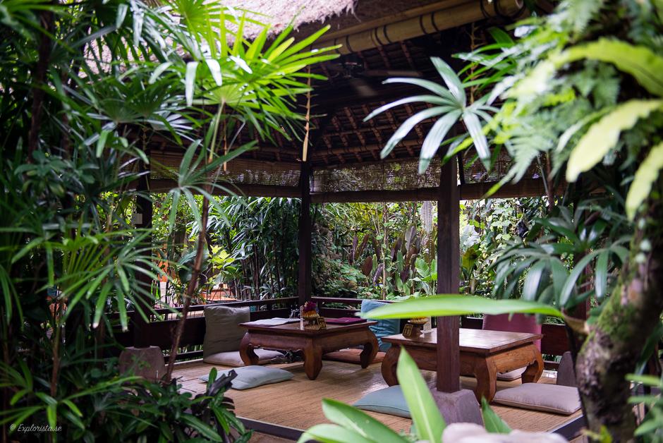 wayan cafe ubud