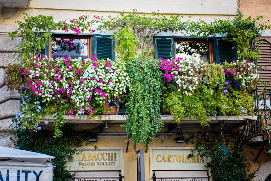 balkong med blommor
