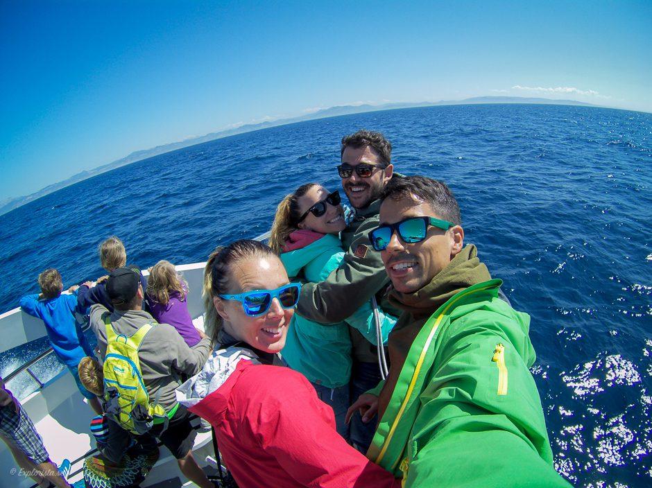 whalewatching people tarifa