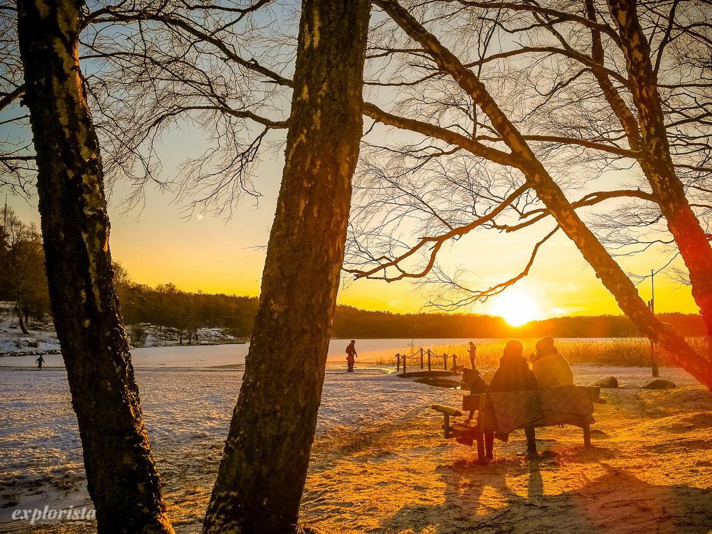 vinter härlanda tjärn motljus