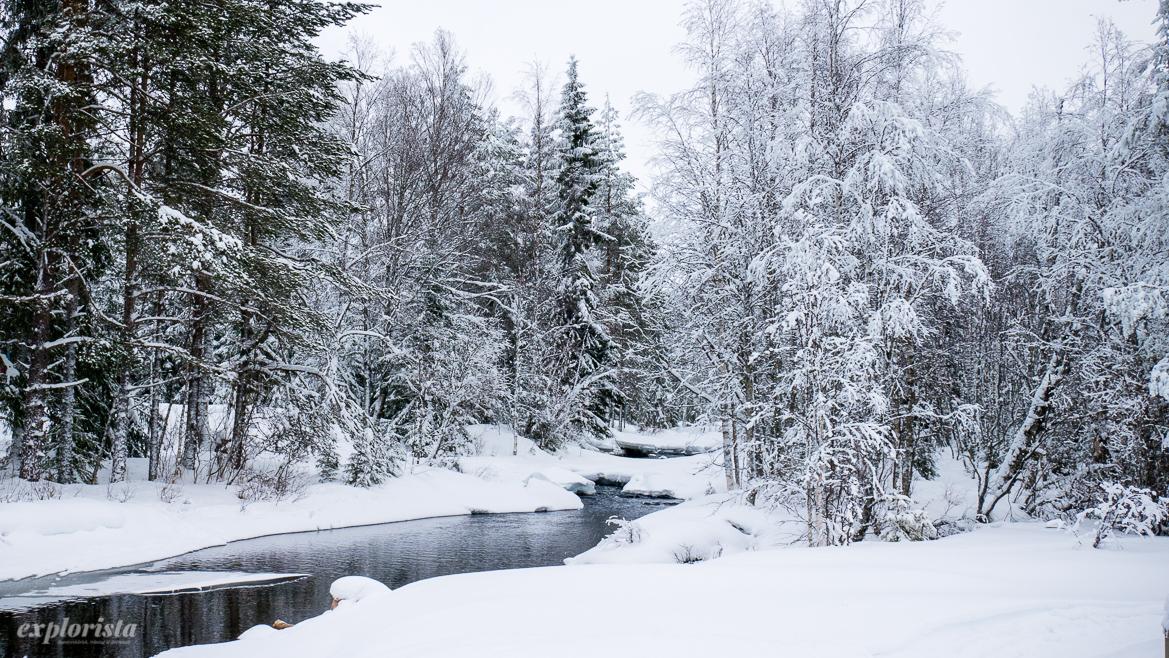 å i snö