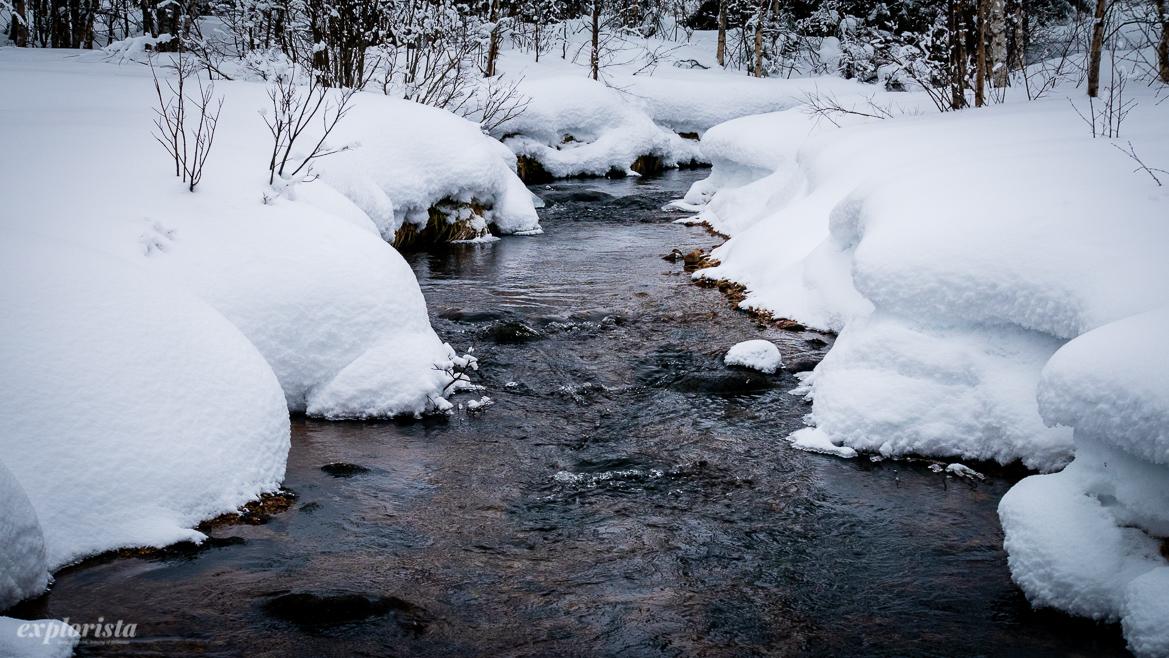 bäck med snö