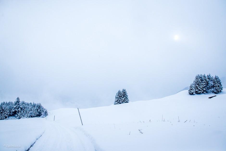snö utsikt